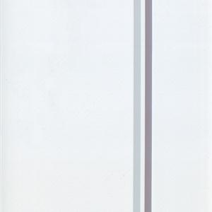 Ύφασμα για κατακόρυφες περσίδες PVC Τύπου 2